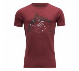 T-shirt HORNINDALROKKEN syrah